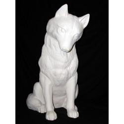 Wolf groß sitzt
