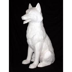Wolf groß hechelt