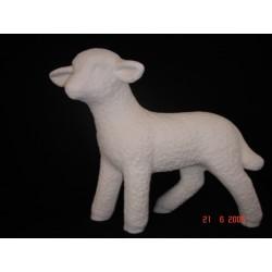 Schaf groß stehend