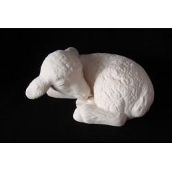 Schaf gekuschelt
